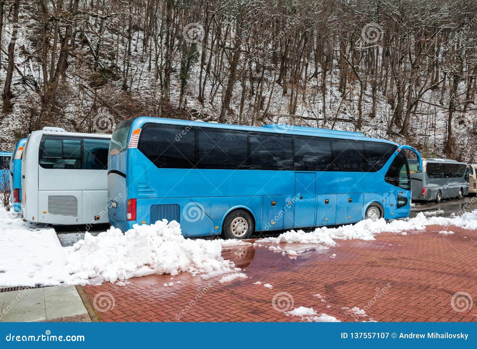 Intercity λεωφορεία που σταθμεύουν κοντά στο δάσος βουνών στο χειμώνα