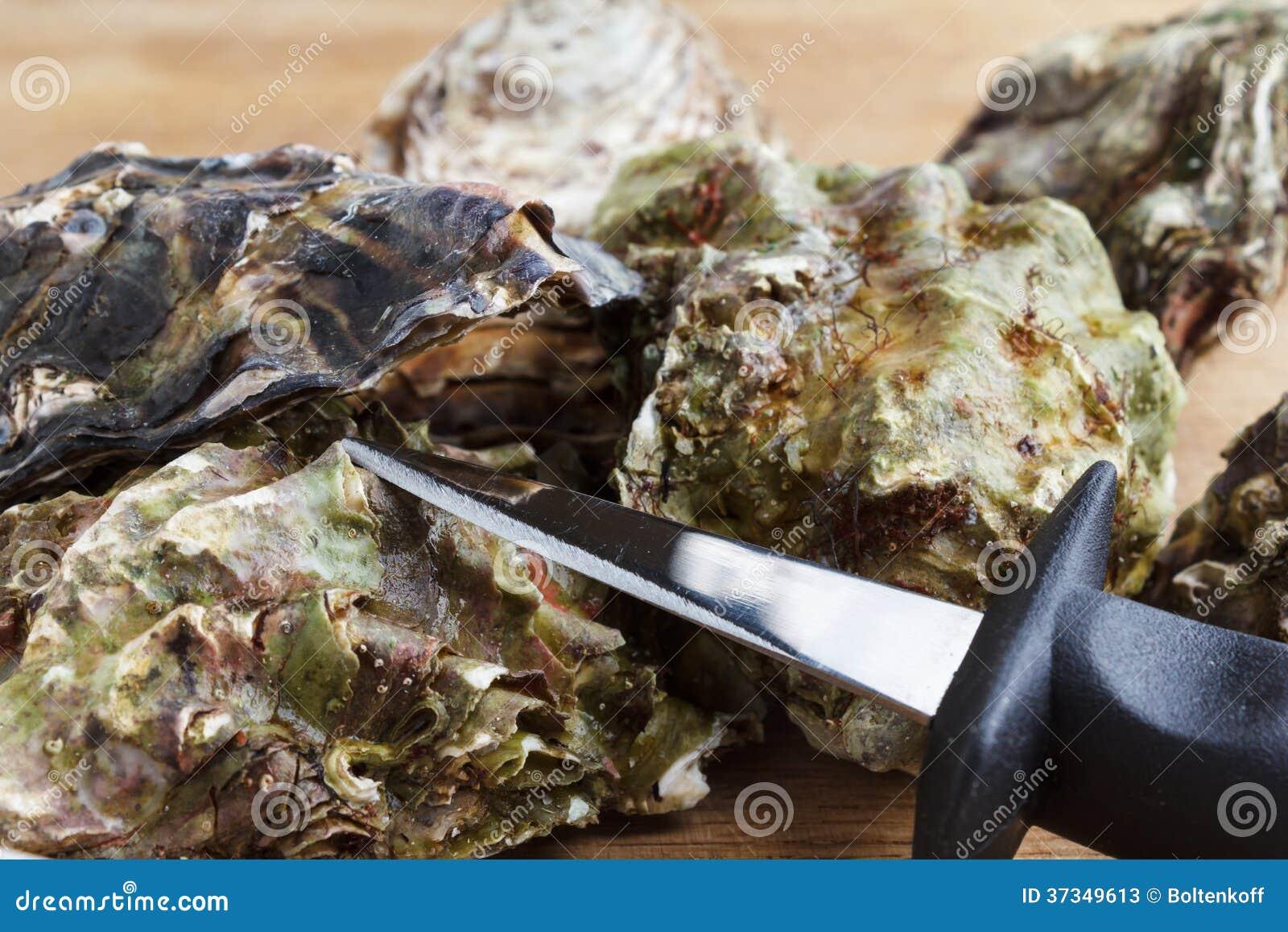 Intere ostriche con un coltello