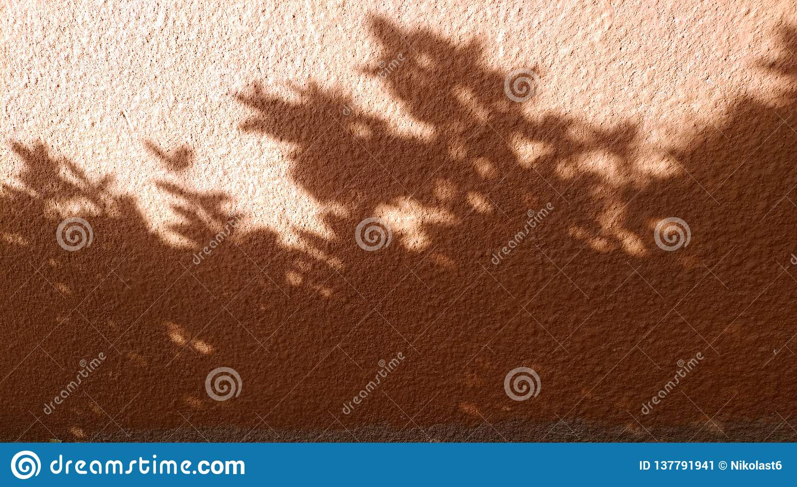 Interesting abstract background with shadow from leaves and window lattice on the wall.