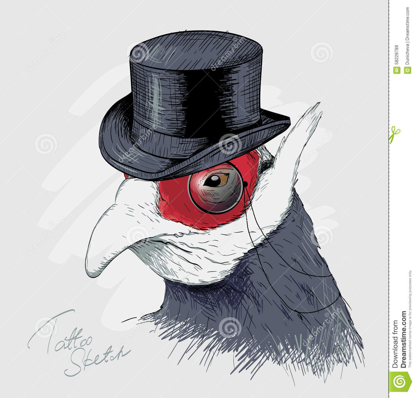 Interesting Bird In Black Top Hat And Monocle. Sketch ...
