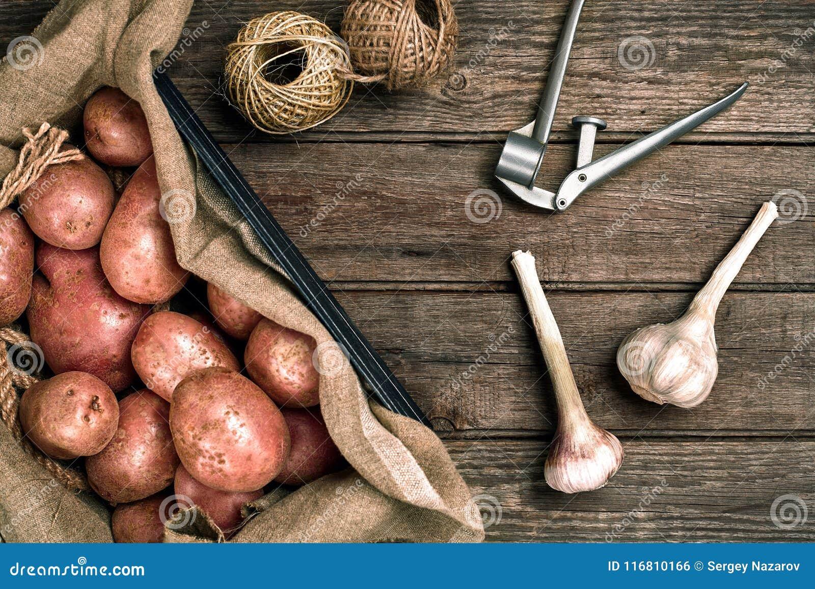 Interi patate ed aglio organici lavati crudi su tela di sacco sopra il vecchio fondo di legno della plancia Vista superiore con s