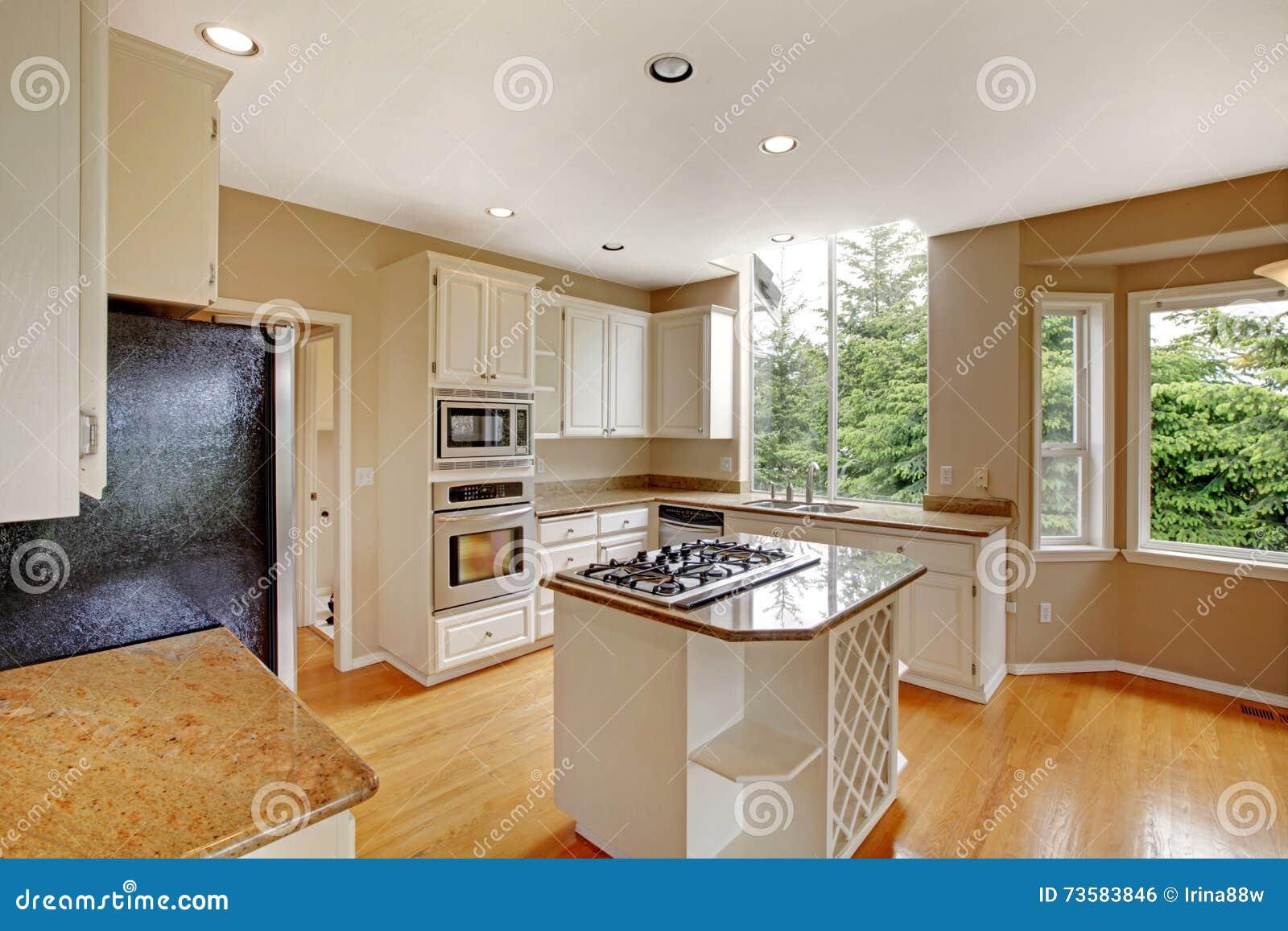 Interior Americano Cl Ssico Pequeno Branco Da Cozinha Com Ilha De