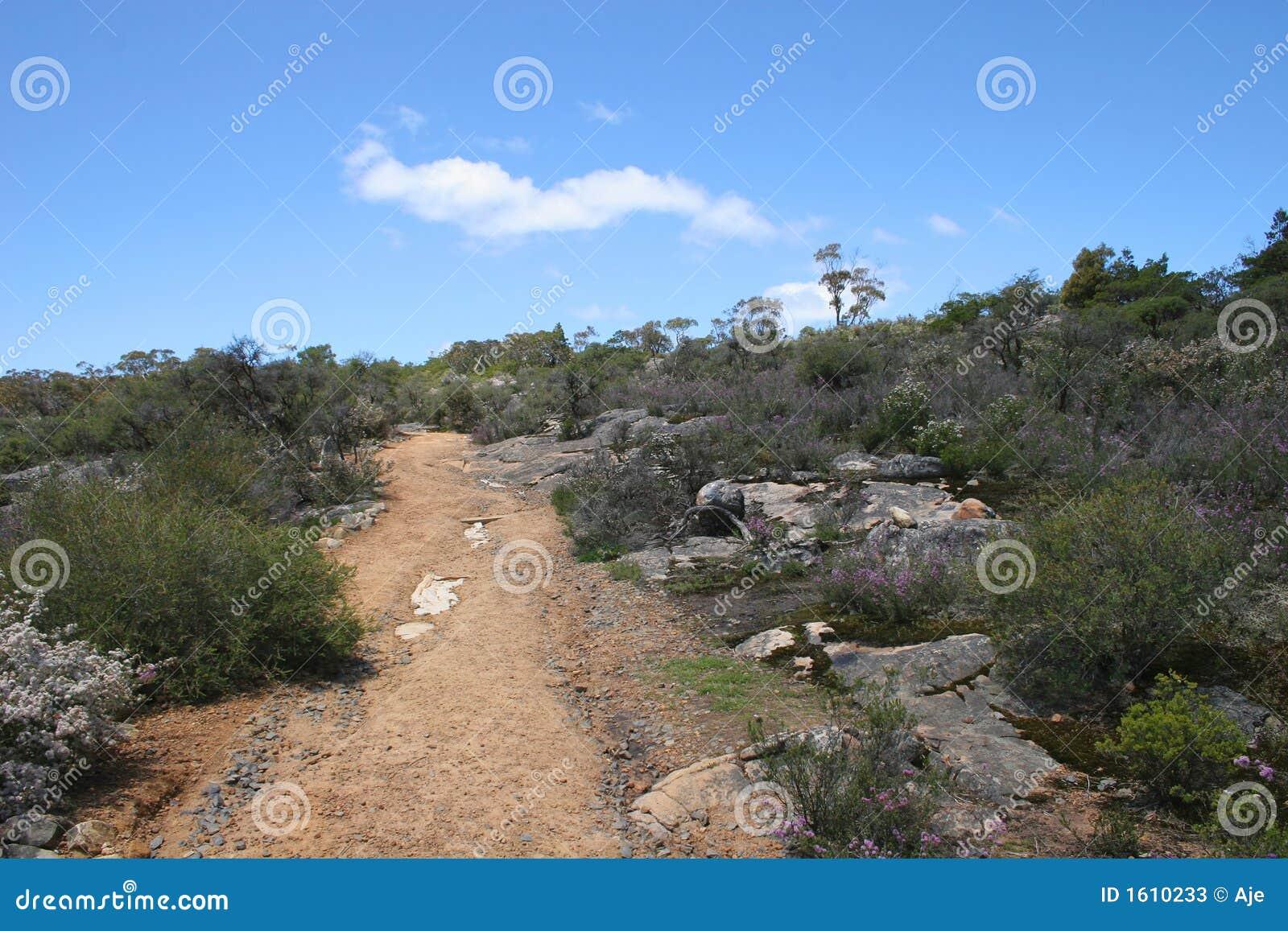 Interior australiano