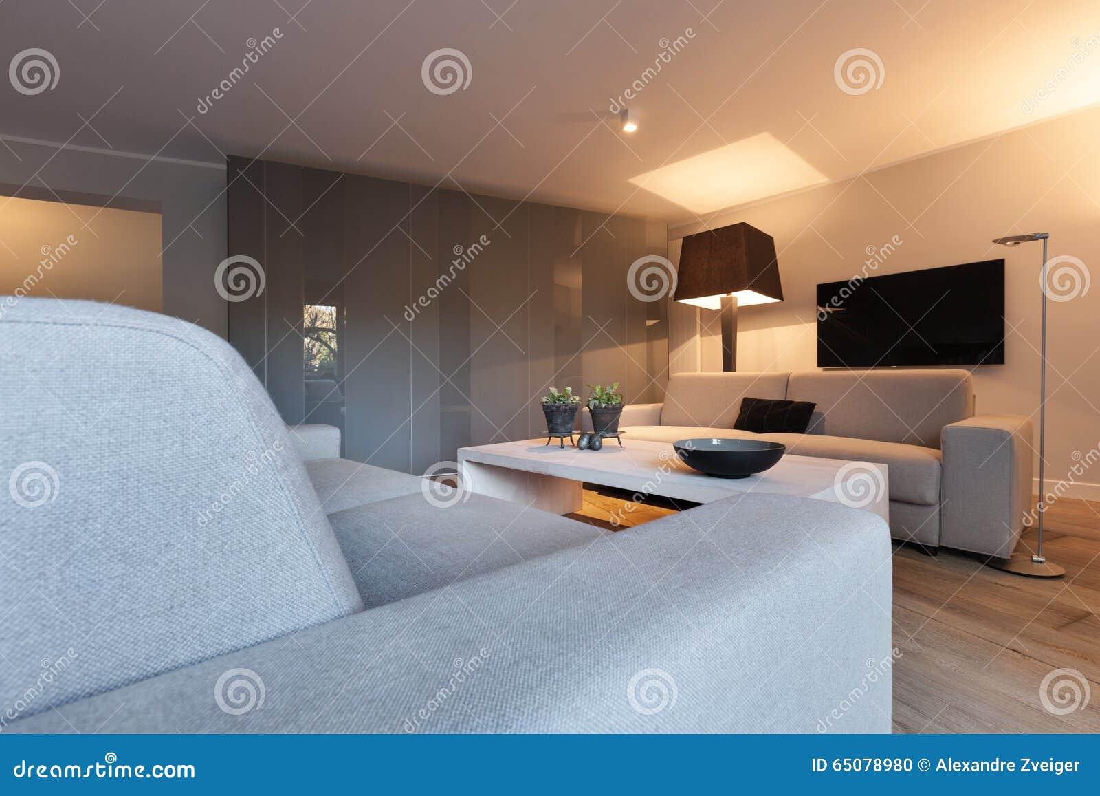 Interior Comfortable Living Room Stock Photo Image 65078980