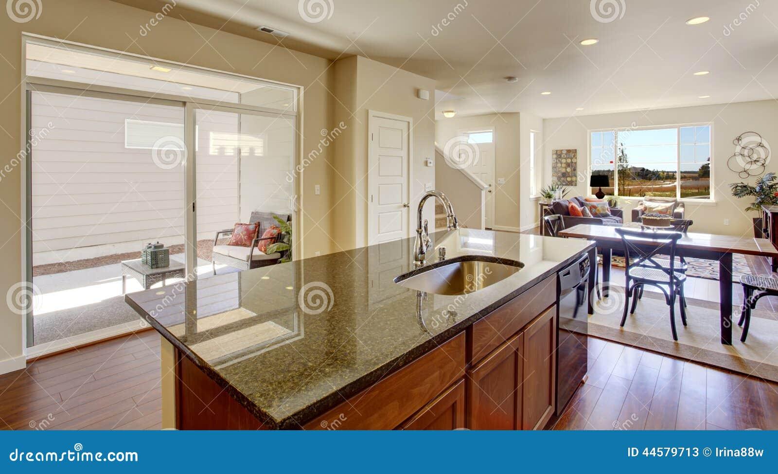 Interior Da Casa Com Planta Baixa Aberta Ilha De Cozinha Com Granito