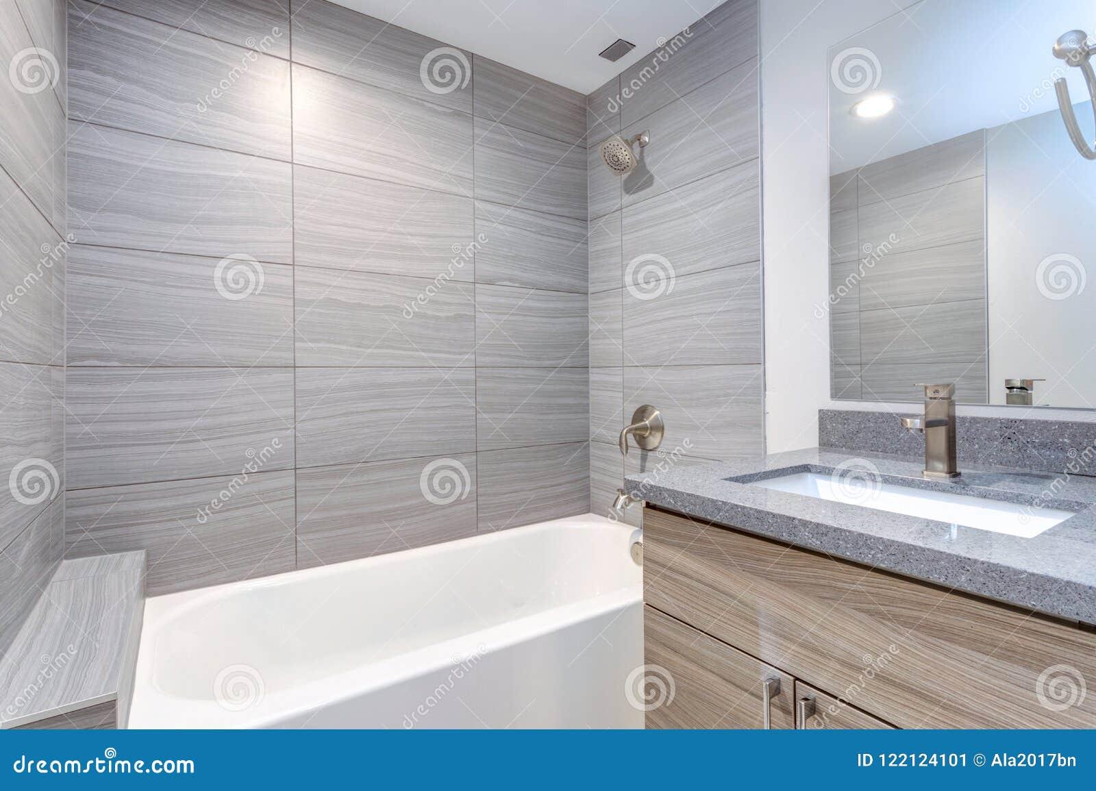 Interior Del Cuarto De Baño Moderno Gris Imagen de archivo ...