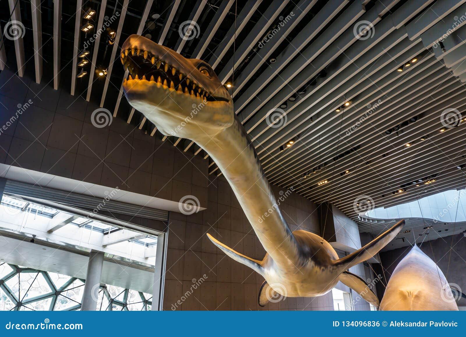 Interior 5 del museo de la historia natural de Shangai