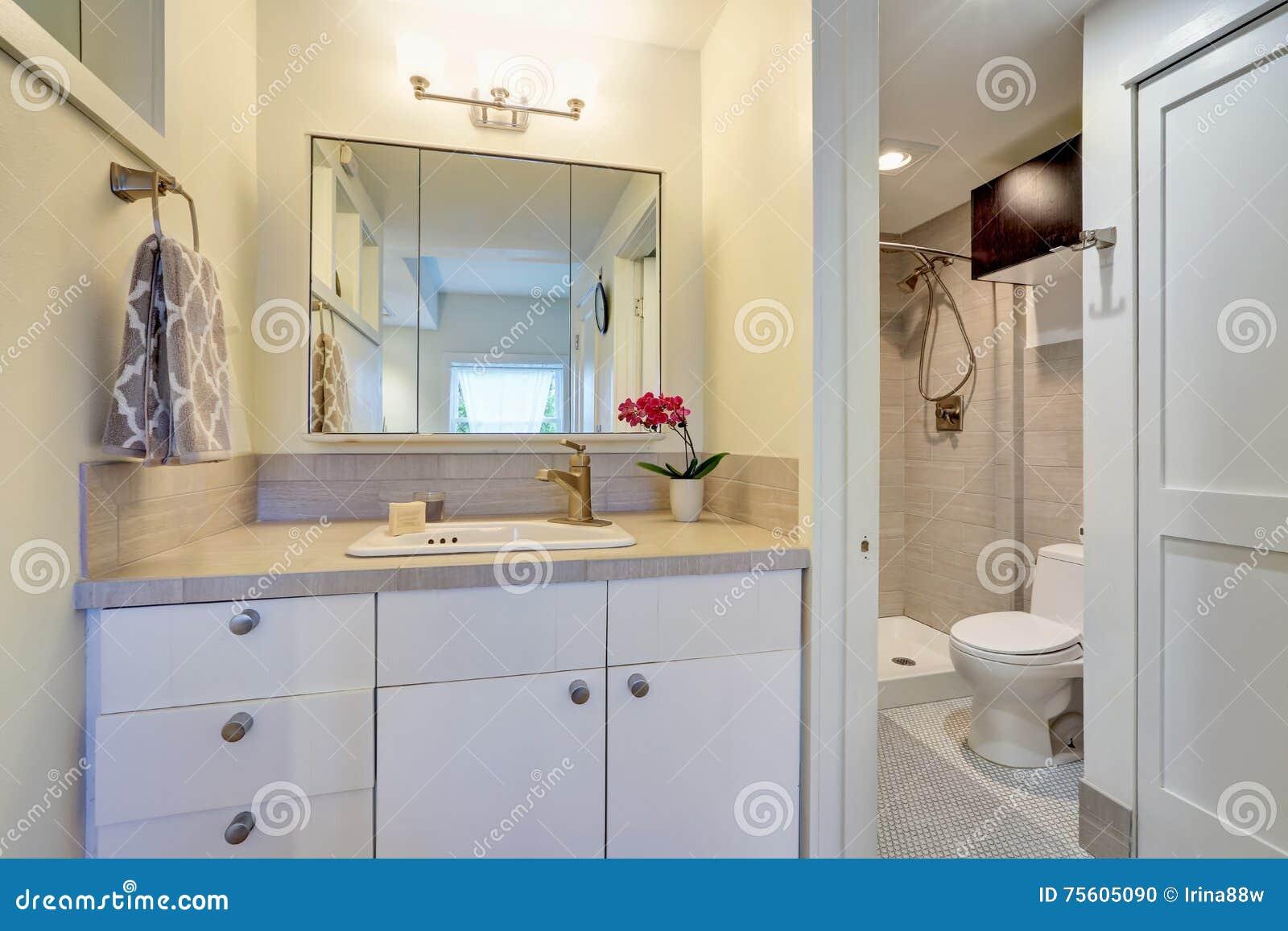 Interior Design Bianco Del Bagno Con Il Vaso Di Fiore Fotografia Stock - Immagine: 75605090
