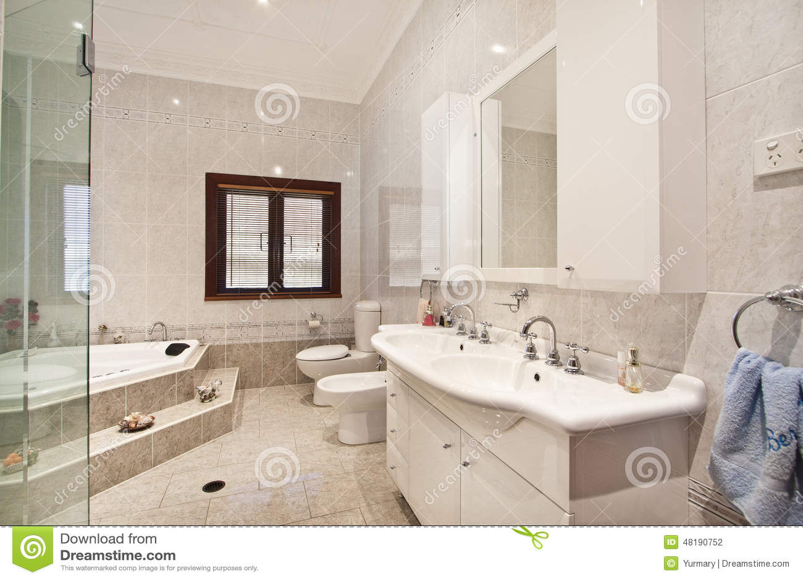 Interior design interno del bagno fotografia stock for Design del bagno