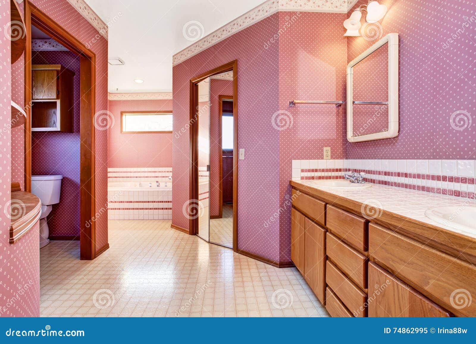 Vasca Da Bagno Rosa : Interior design rosa di lusso del bagno immagine stock immagine