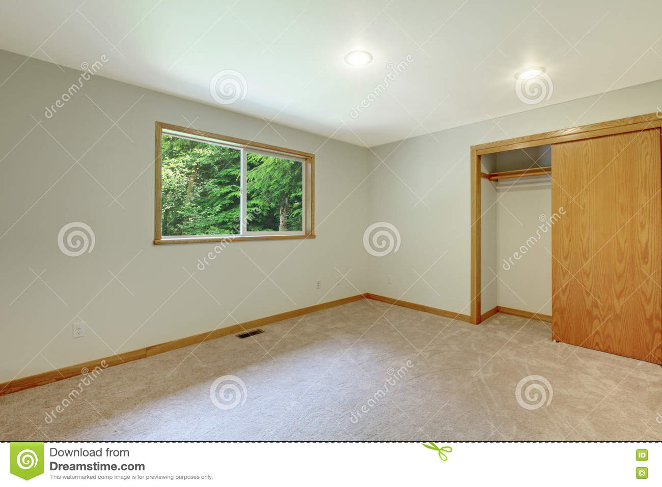Interior Empty Room With Closet Carpet Floor And Small