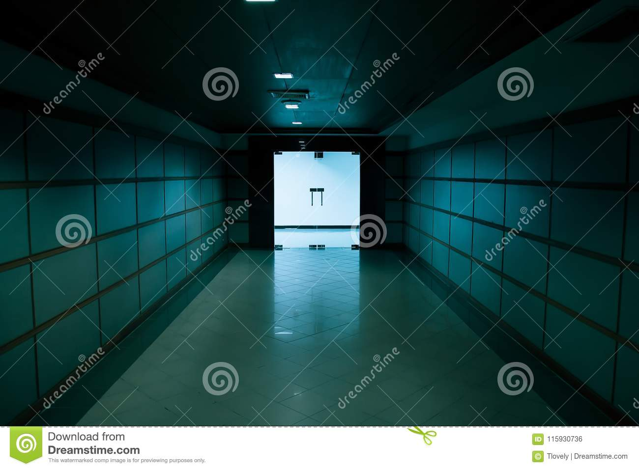 Interior With Glass Doors And A Showcase Stock Photo Image Of