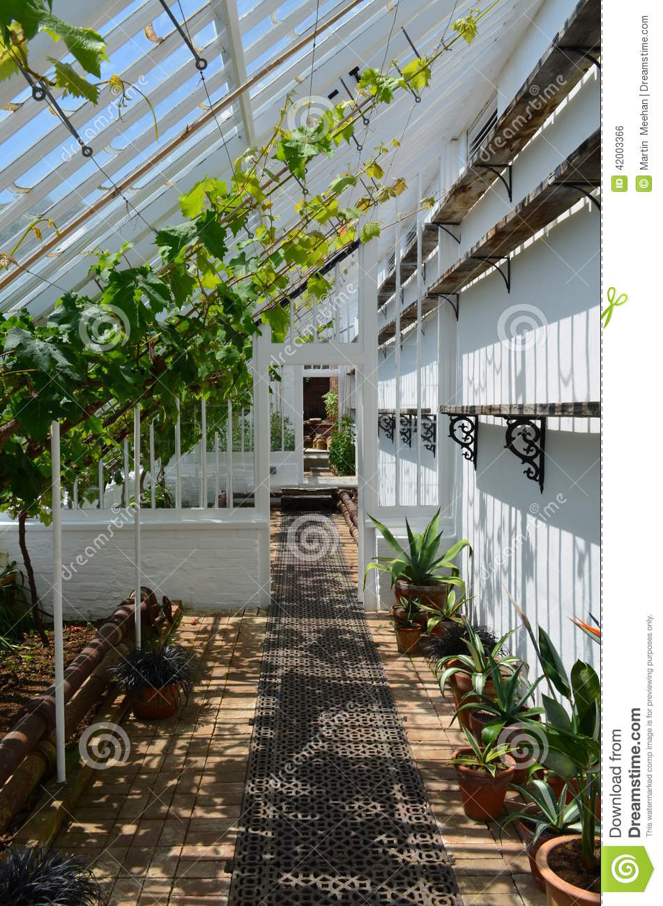 Interior Of A Large Garden Greenhouse Stock Photo Image