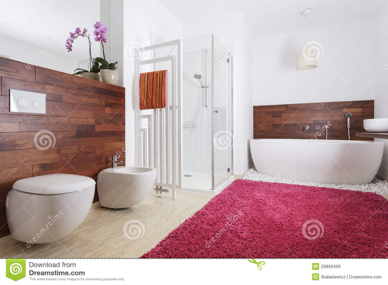 Bathroom interior with exotic wood stock image image 29856499 for Wall to wall carpet for bathroom
