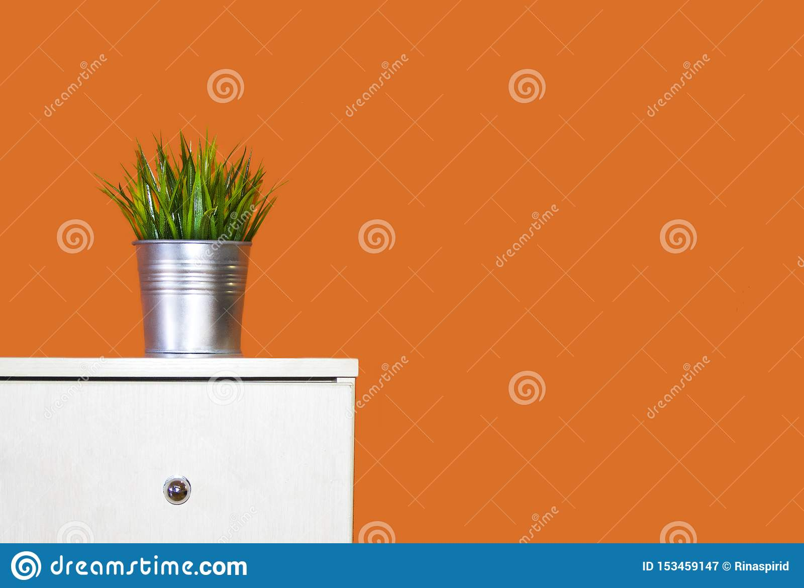 Interior pote con la hierba decorativa que se coloca en el aparador contra la perspectiva de la pared anaranjada
