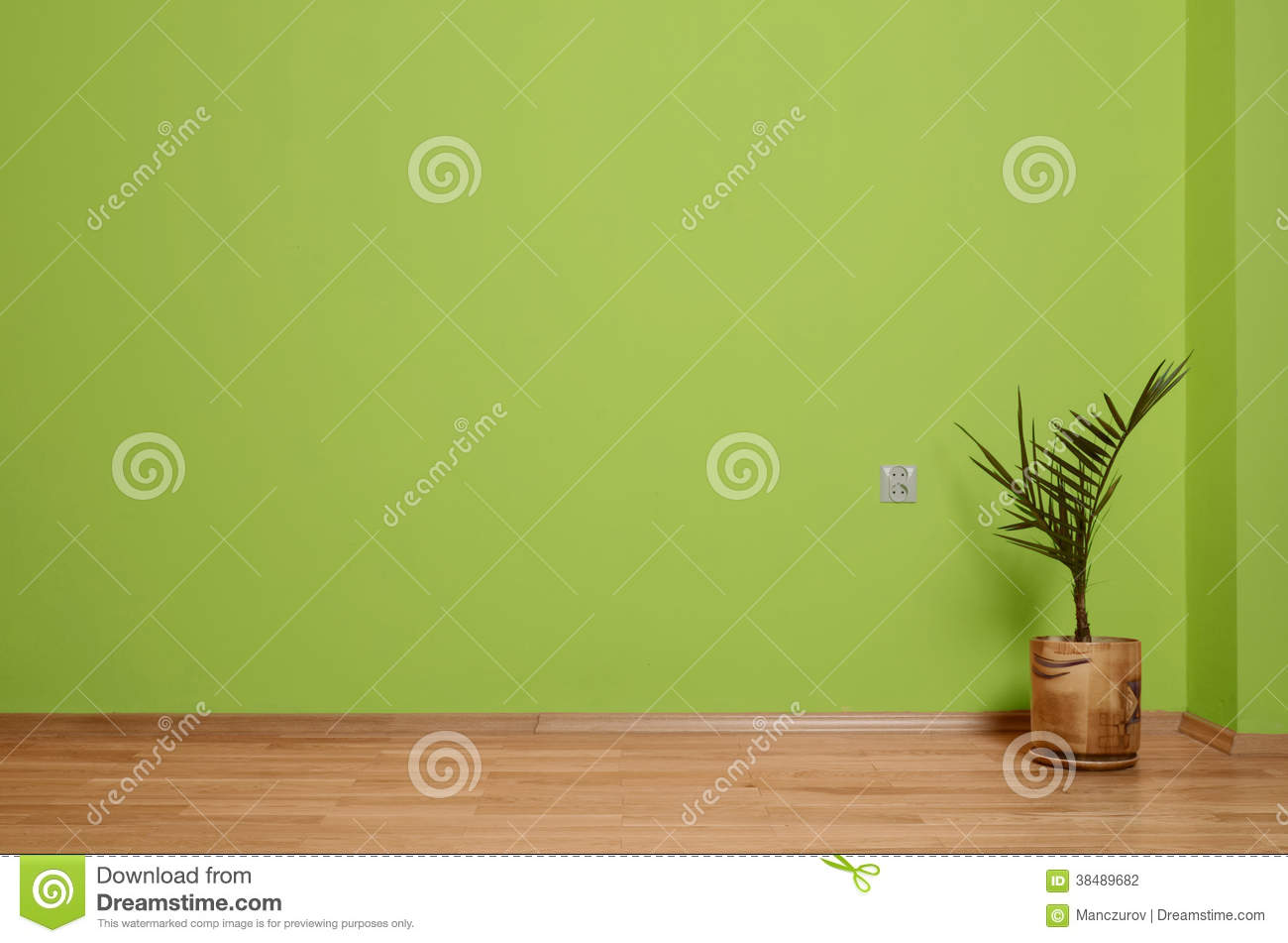 Interior room with wooden floor plant and wall in green for Green floor plant