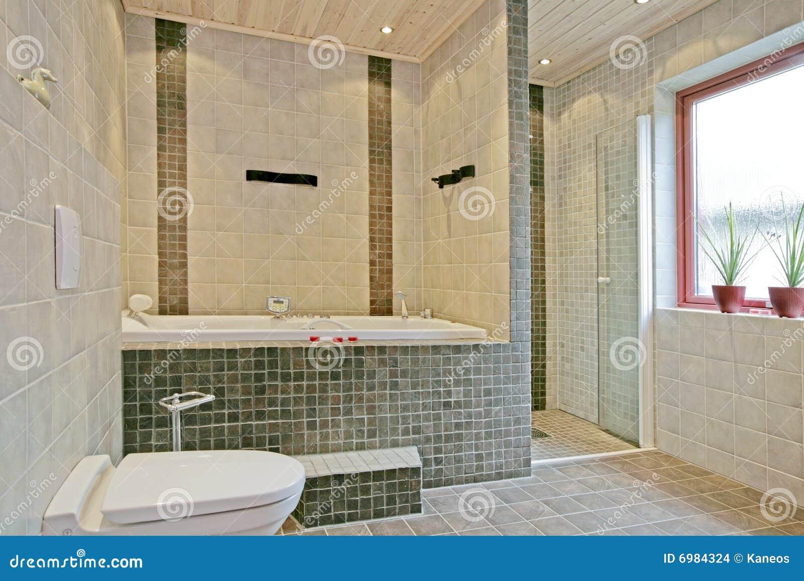 Interior sueco exclusivo do banheiro imagens de stock for Interieur suedois