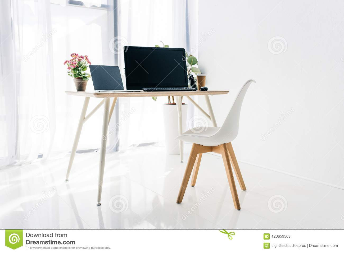 interior of workplace with chair, potted plants, laptop and computer