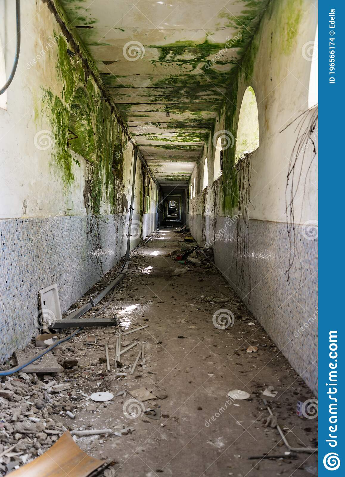 Internal Spaces Into The Abandoned Insane Asylum In Naples Italy Stock Photo Image Of Abandon Interior 196566174