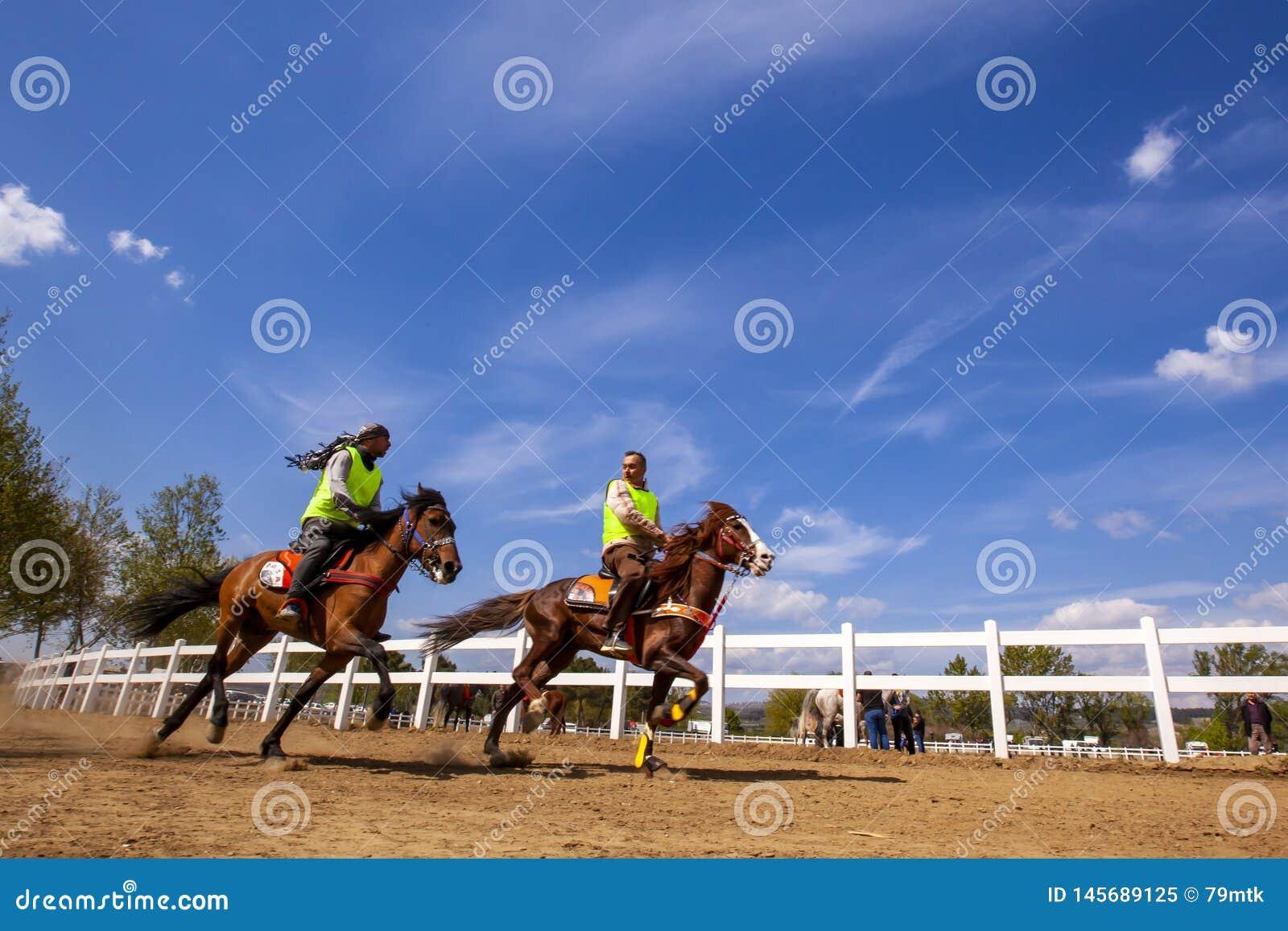 International Conquering Festival Rahvan Horse Racing