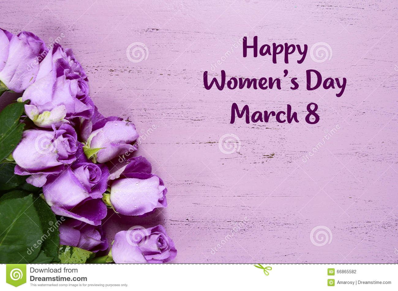 International Womens Day Purple Roses