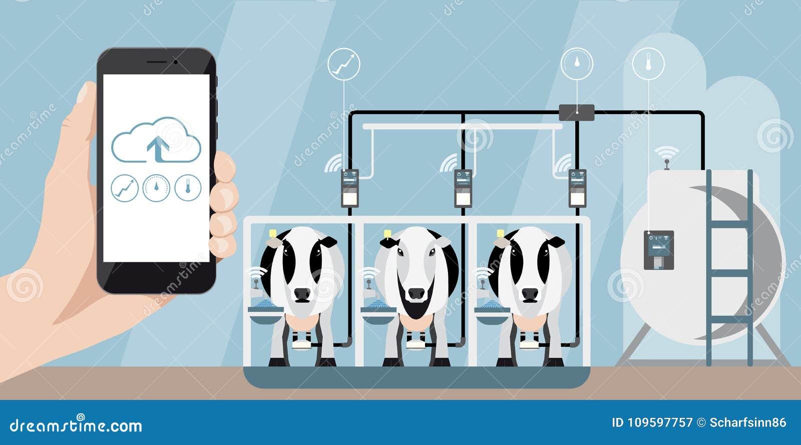 Internet av saker på mejerilantgård