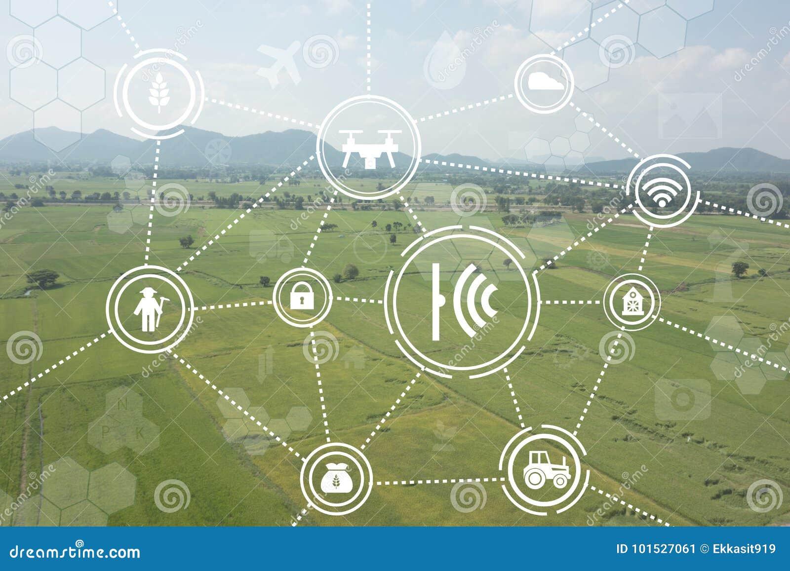 Internet d agriculture industrielle de choses, concepts agricoles futés