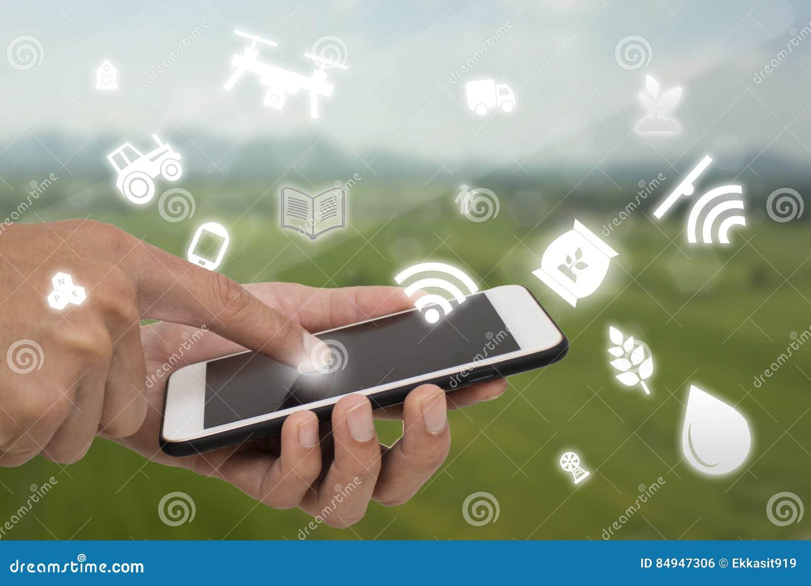Internet des Sachenlandwirtschaftskonzeptes, intelligentes, industrielle Landwirtschaft, Landwirtgebrauchstechnologie herein bewi