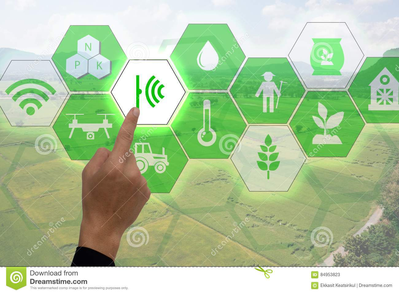 Internet of thingsagriculture concept, smart farming, industrial agriculture. Farmer point hand to use augmented reality technolog