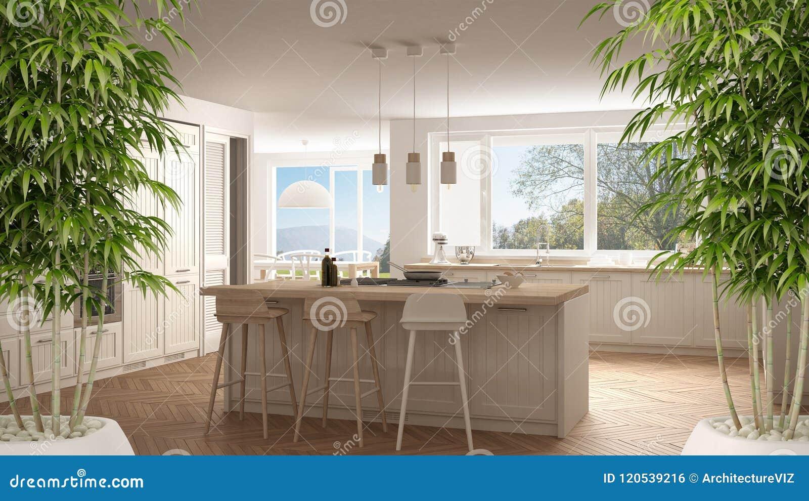 Interno con la pianta di bamb conservata in vaso for Casa moderna tortora