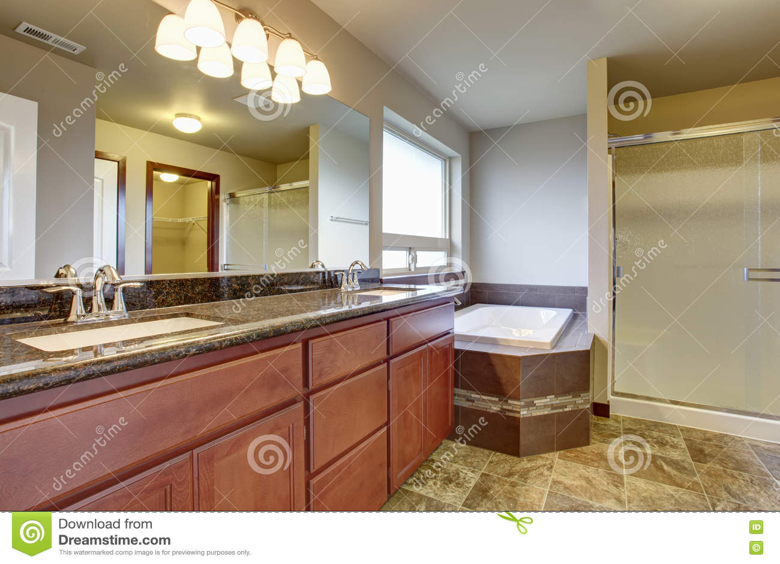 Vasca Da Bagno Con Lavandino : Interno del bagno con il gabinetto di vanità due lavandini e la