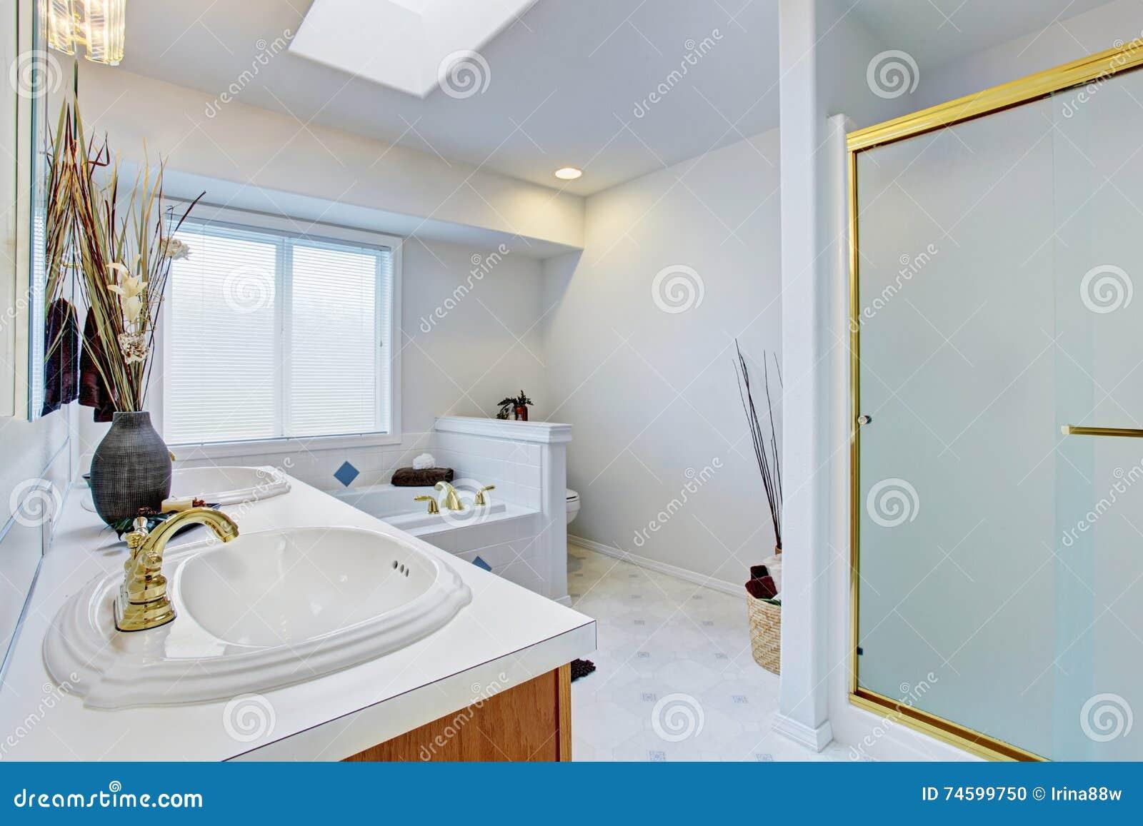Bagni Con Piastrelle Bianchi : Interno del bagno nei toni bianchi con i gabinetti marroni