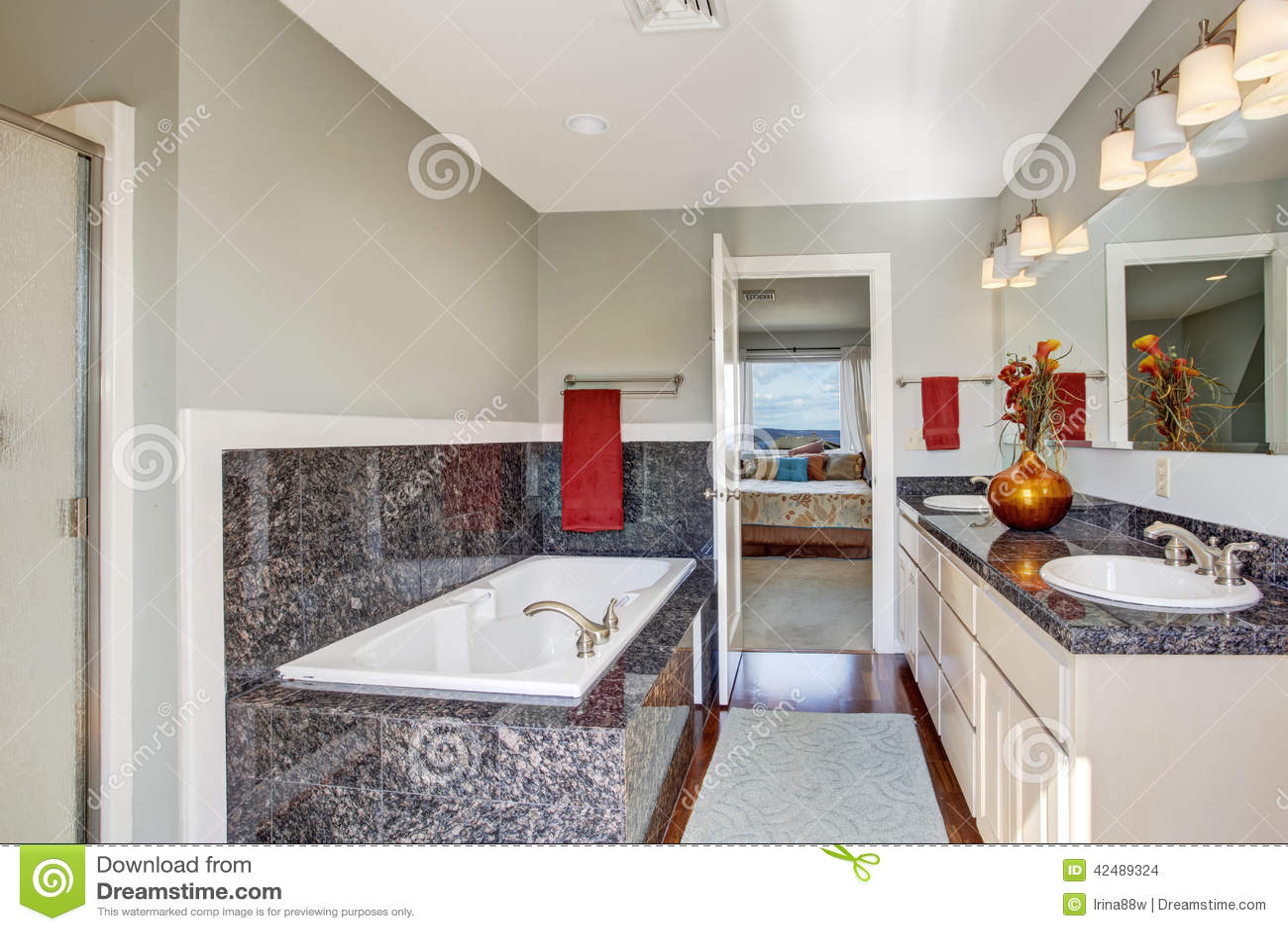Interno Moderno Del Bagno In Camera Da Letto Principale Fotografia Stock - Immagine: 42489324