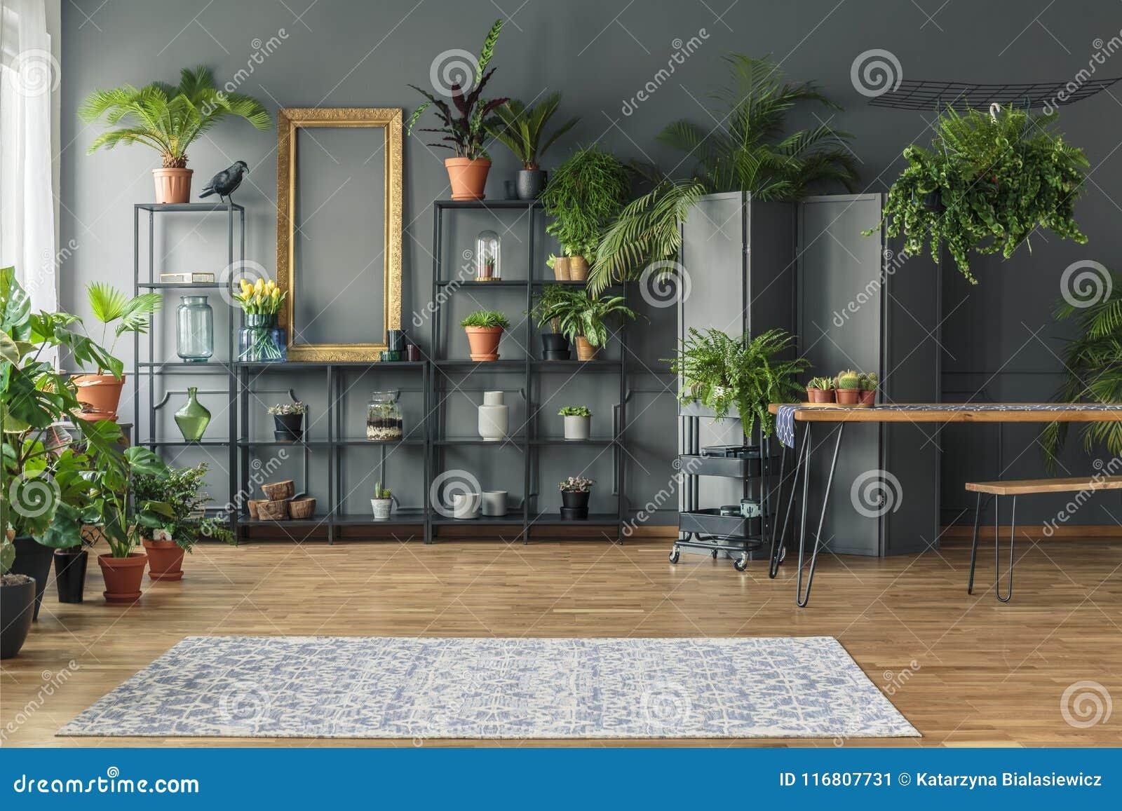 Interno tropicale dell appartamento con molte piante, pareti scure con il Mo