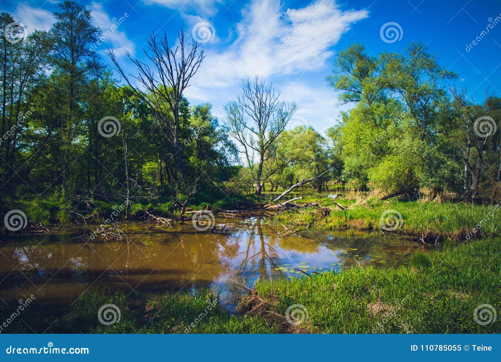 Interrupção do meandro de um rio