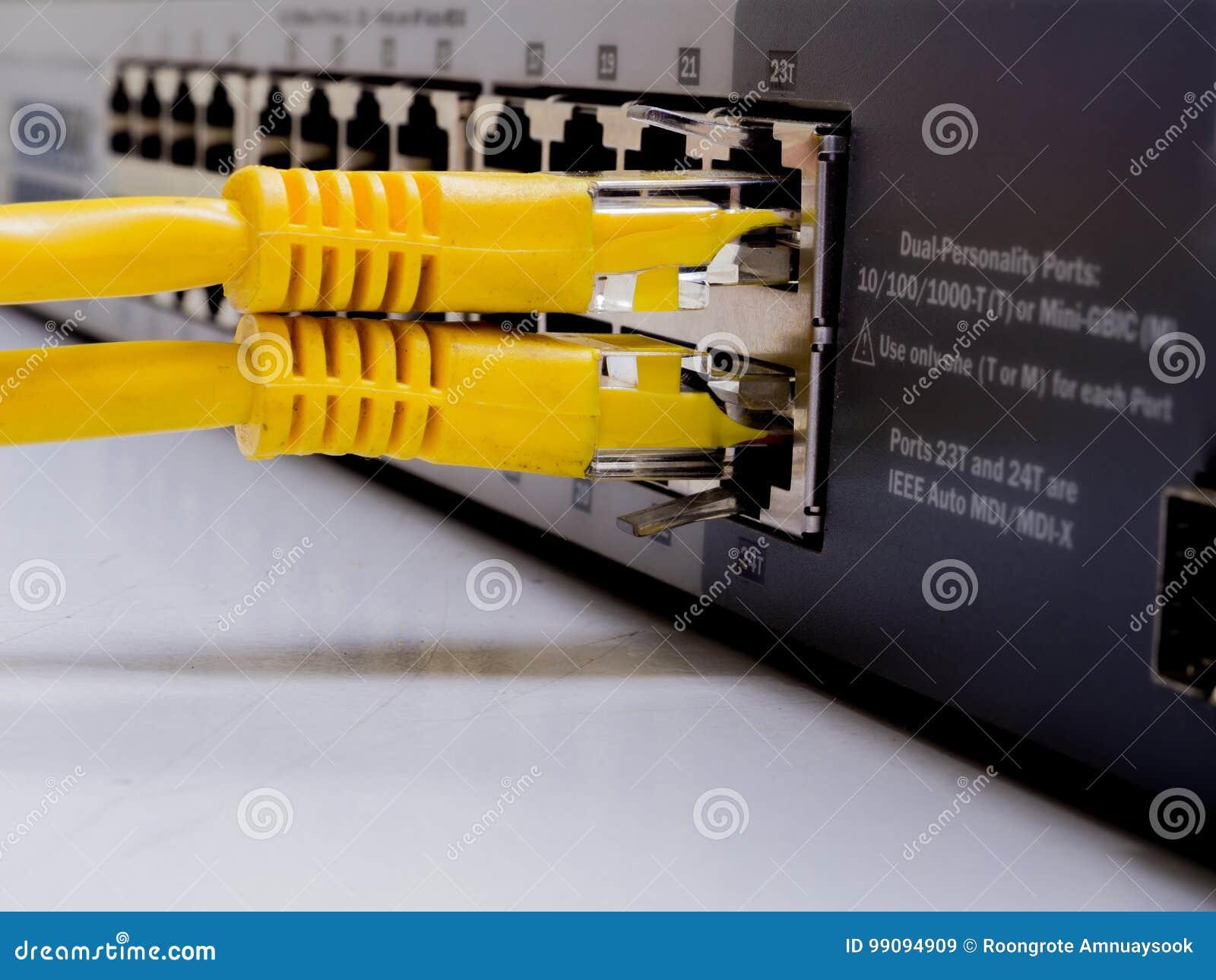 Interruptor de rede e cabos ethernet, conceito do centro de dados ao commun