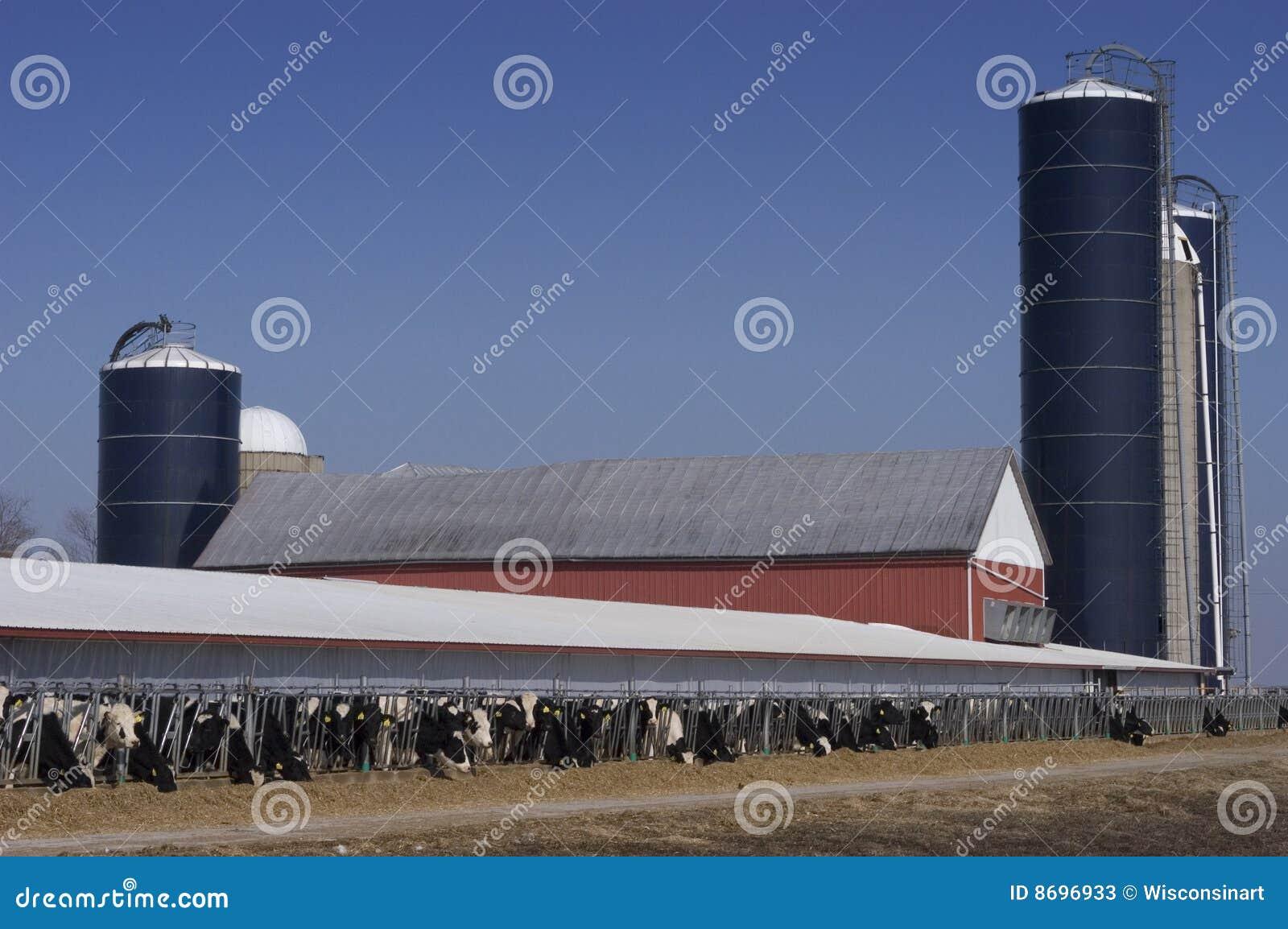 Intimorisce il latte Wisconsin moderno dello stabilimento lattiero-caseario