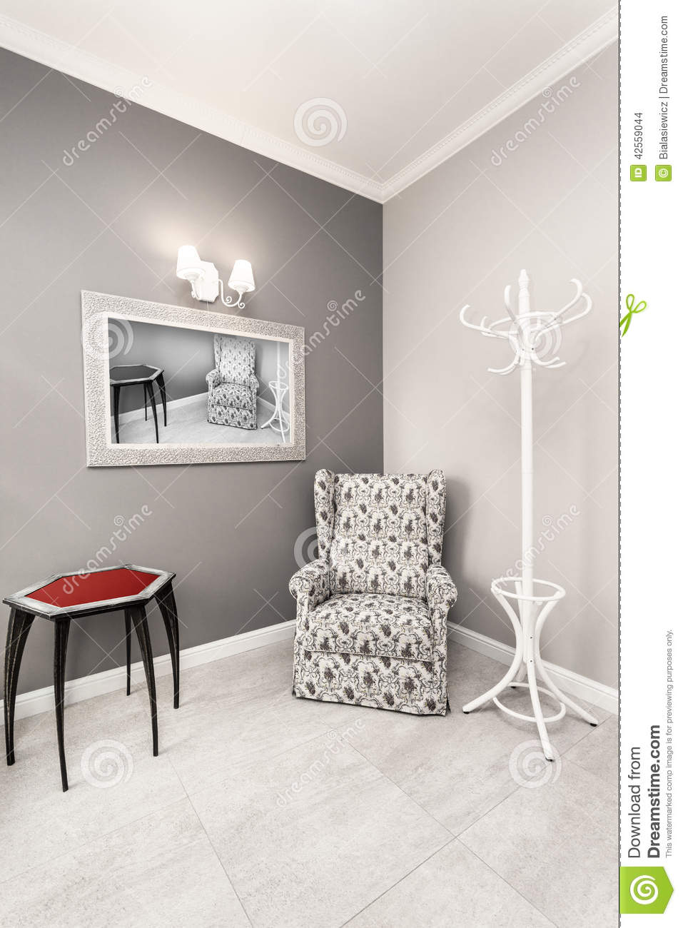 Int rieur gris et blanc de luxe photo stock image 42559044 for Interieur de luxe