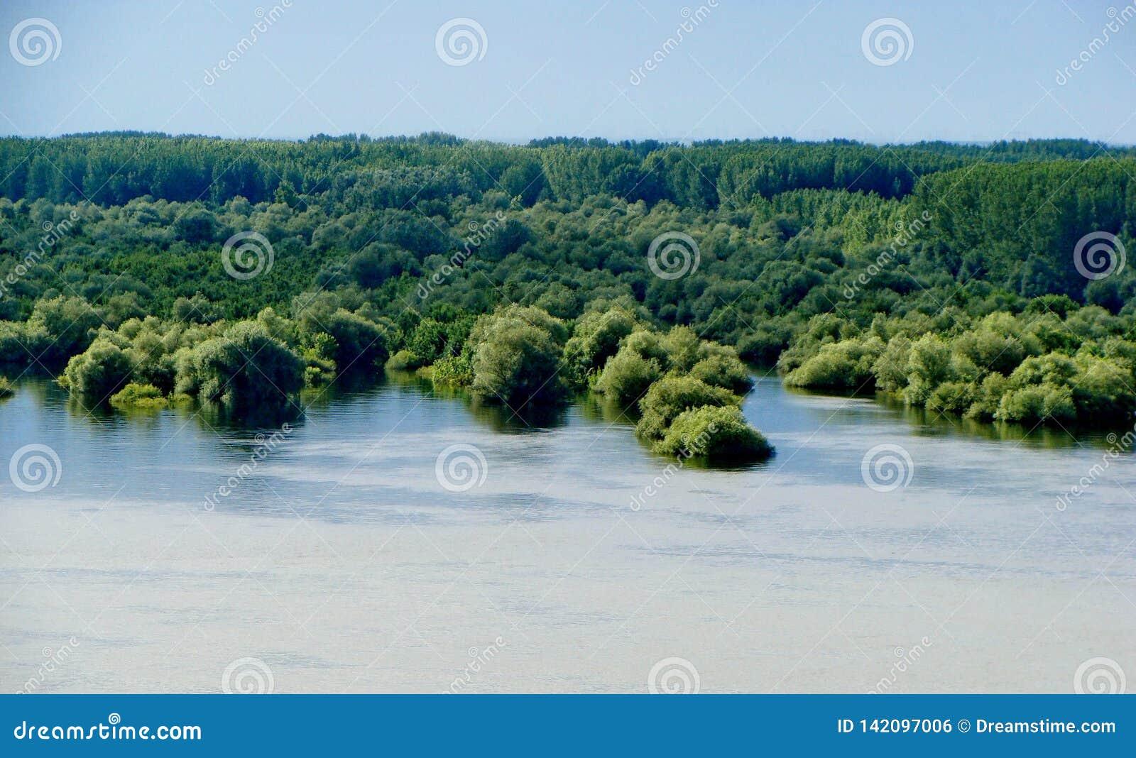 Inundación cerca de Novi Sad