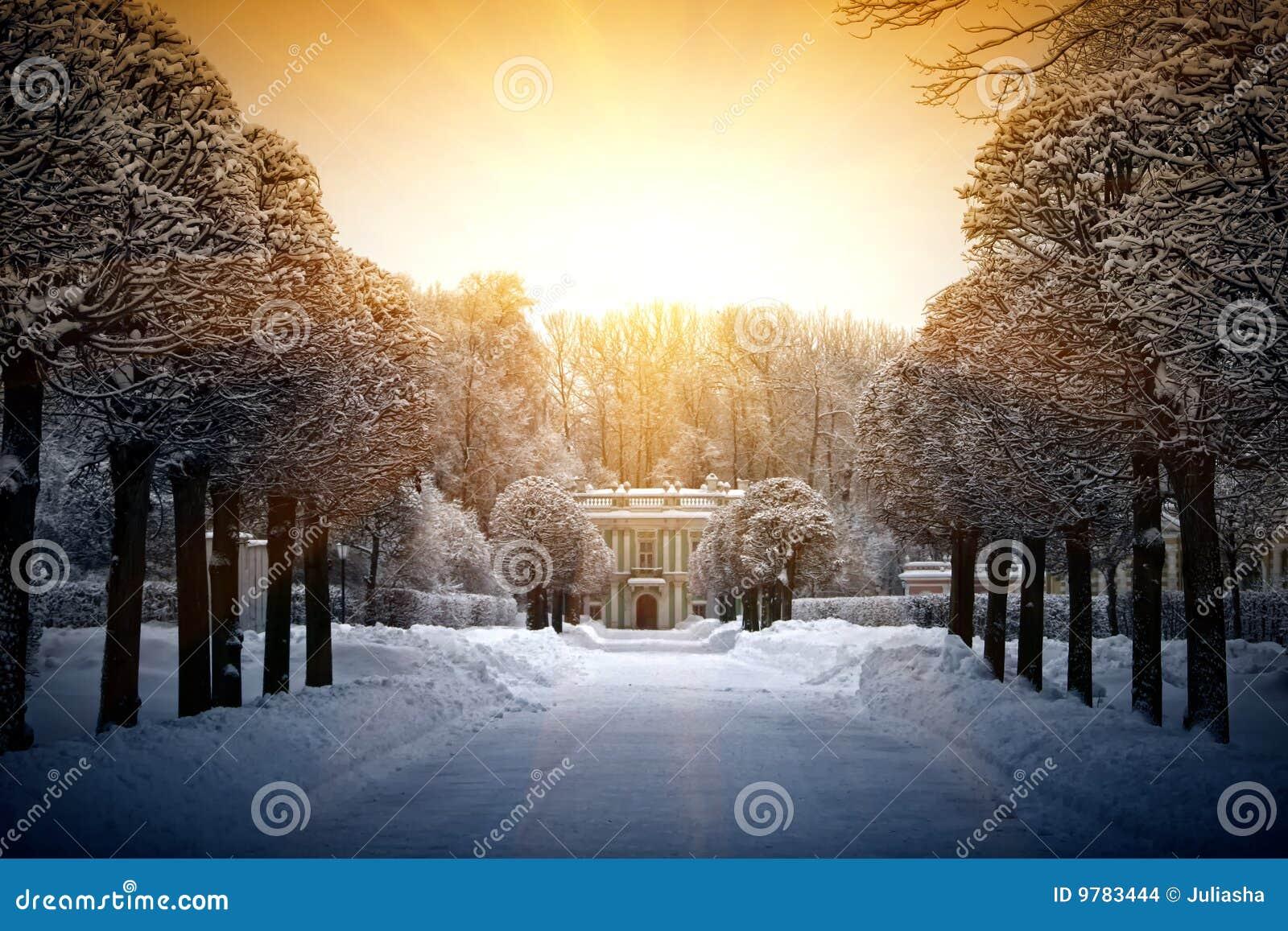 Inverno bonito em Kuskovo