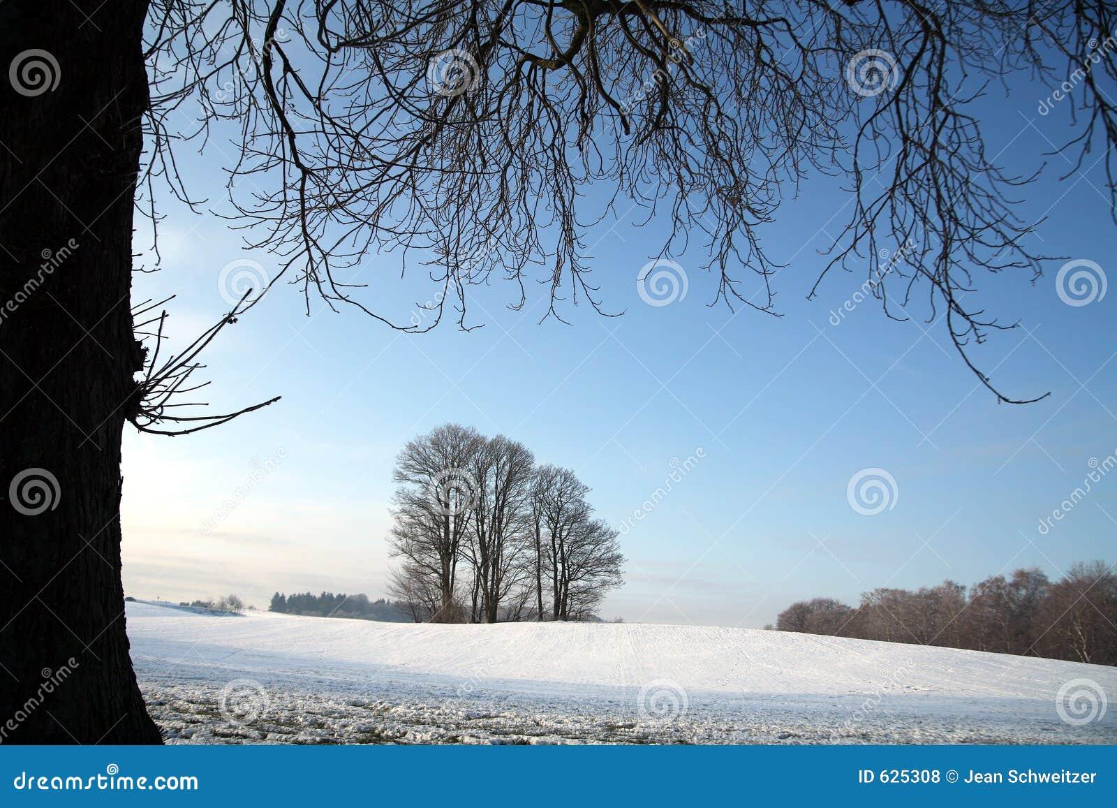 Inverno in Danimarca