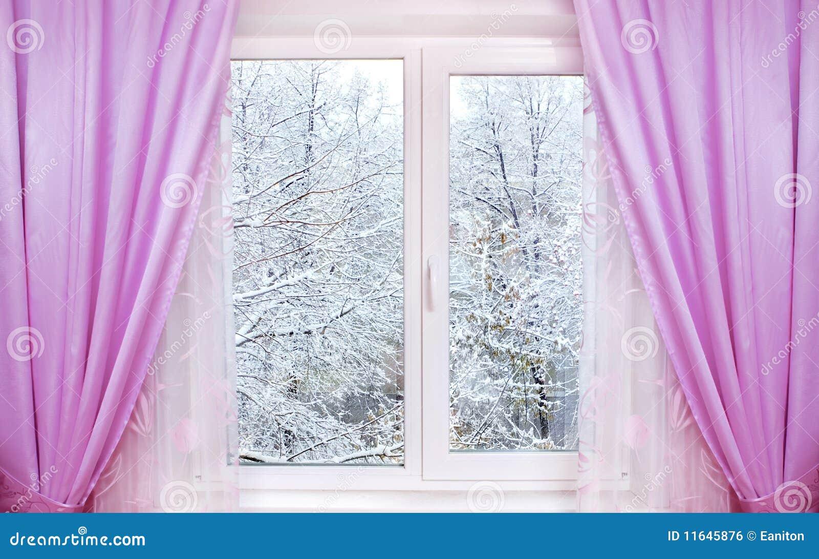 Inverno do indicador