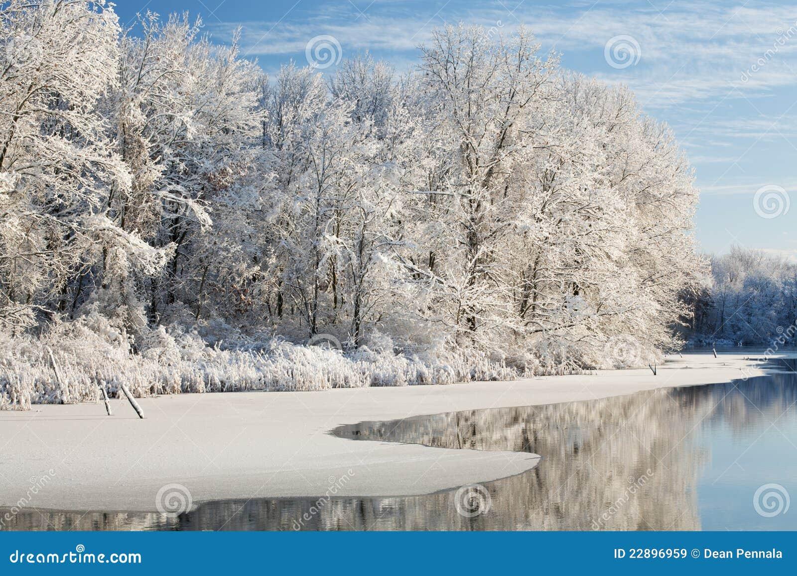 Inverno, lago jackson Hole