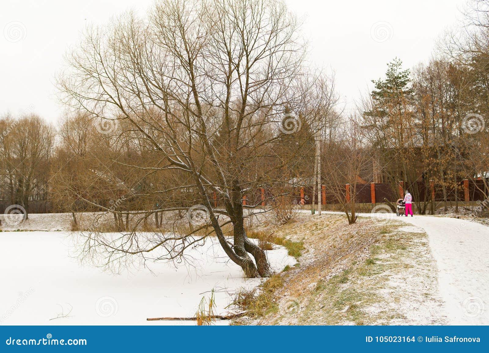 Inverno nella via Lo stagno congelato Supporto degli alberi senza foglie