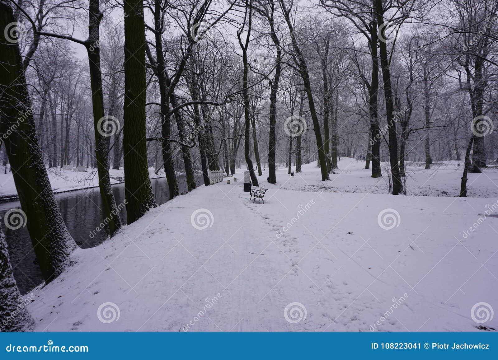 Inverno no parque 4
