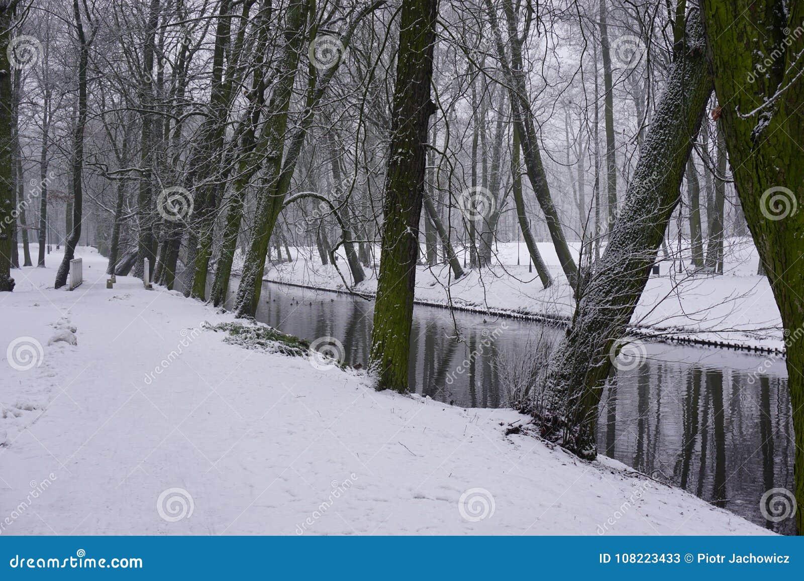 Inverno no parque 9
