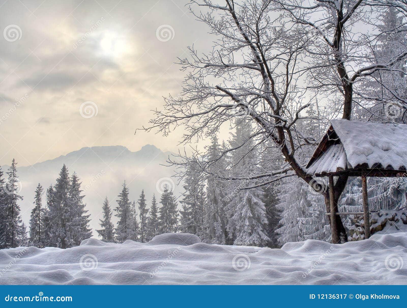 Inverno in polonia fotografia stock libera da diritti - Animali in inverno clipart ...