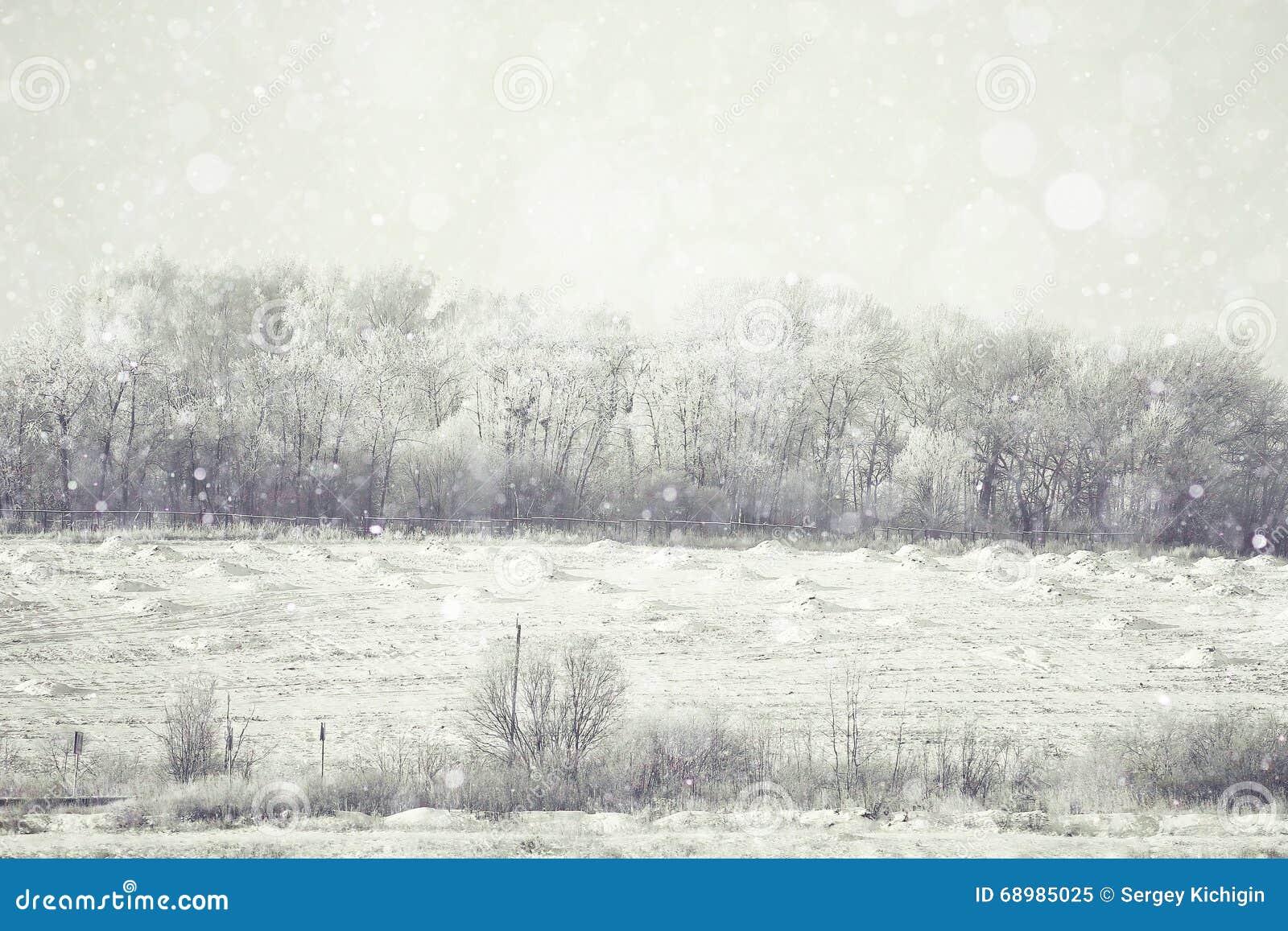 Invierno borroso del fondo