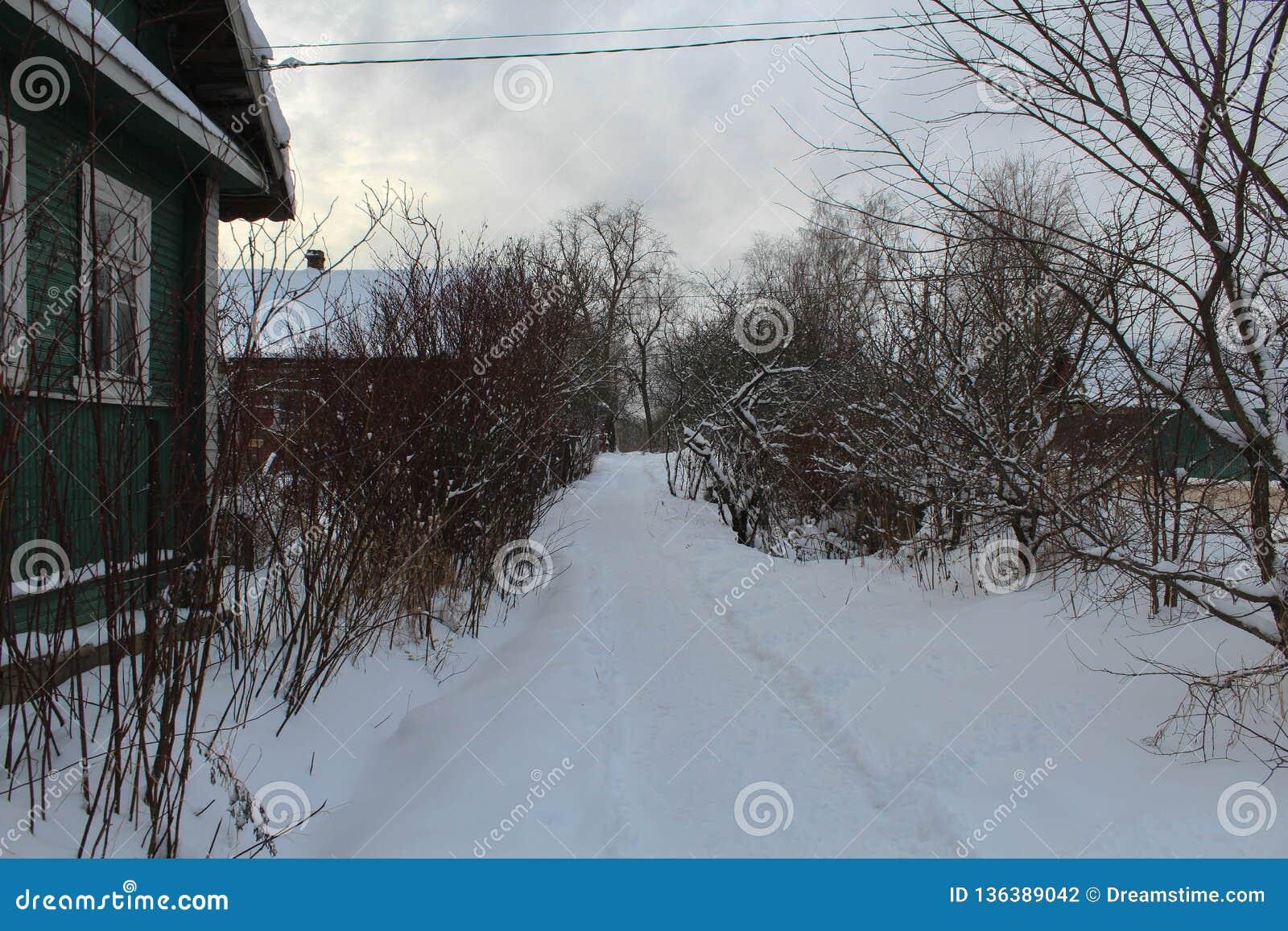 Invierno Camino en la nieve Paisaje del invierno Sin la gente