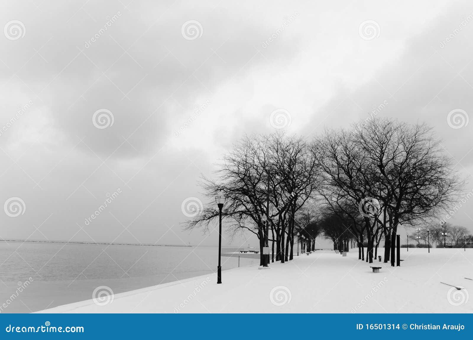 Invierno de Chicago